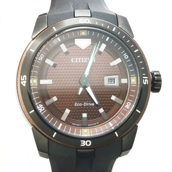 Citizen Eco-Drive Ecosphere Watch