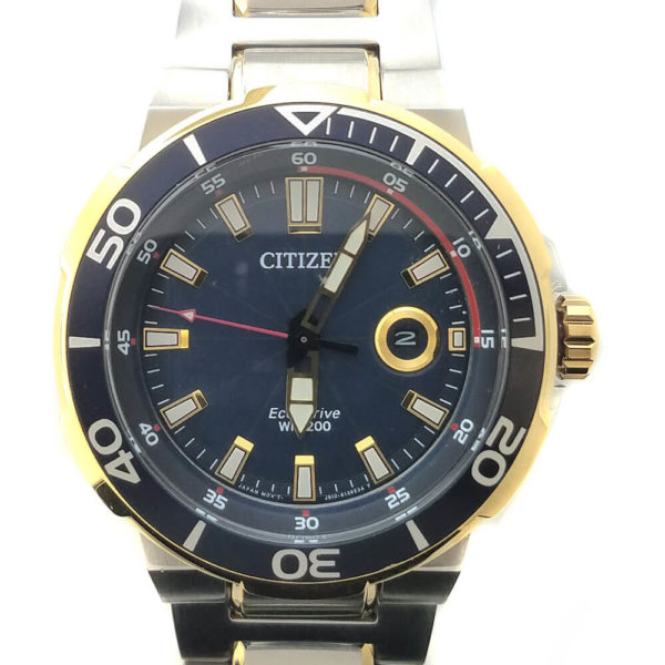 Citizen Eco-Drive Endeavor Watch