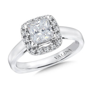 14K White Gold 0.25ct Diamond Engagement Ring 1.00ct Princess cut center